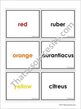 Colors in Latin Matching Game