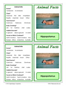 Hippopotamus Animal Facts Learning Card