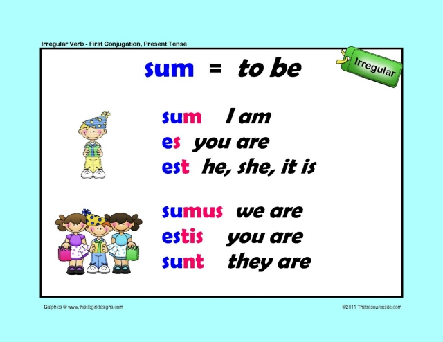 Irregular Verb To Be 1st Conjugation Latin Poster