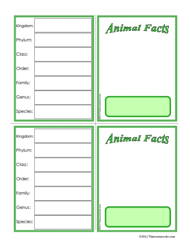 Animal Facts Learning Card Template with Classification