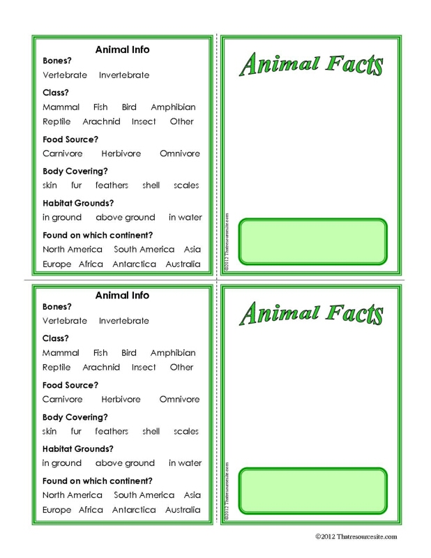 Animal Facts Learning Card Template