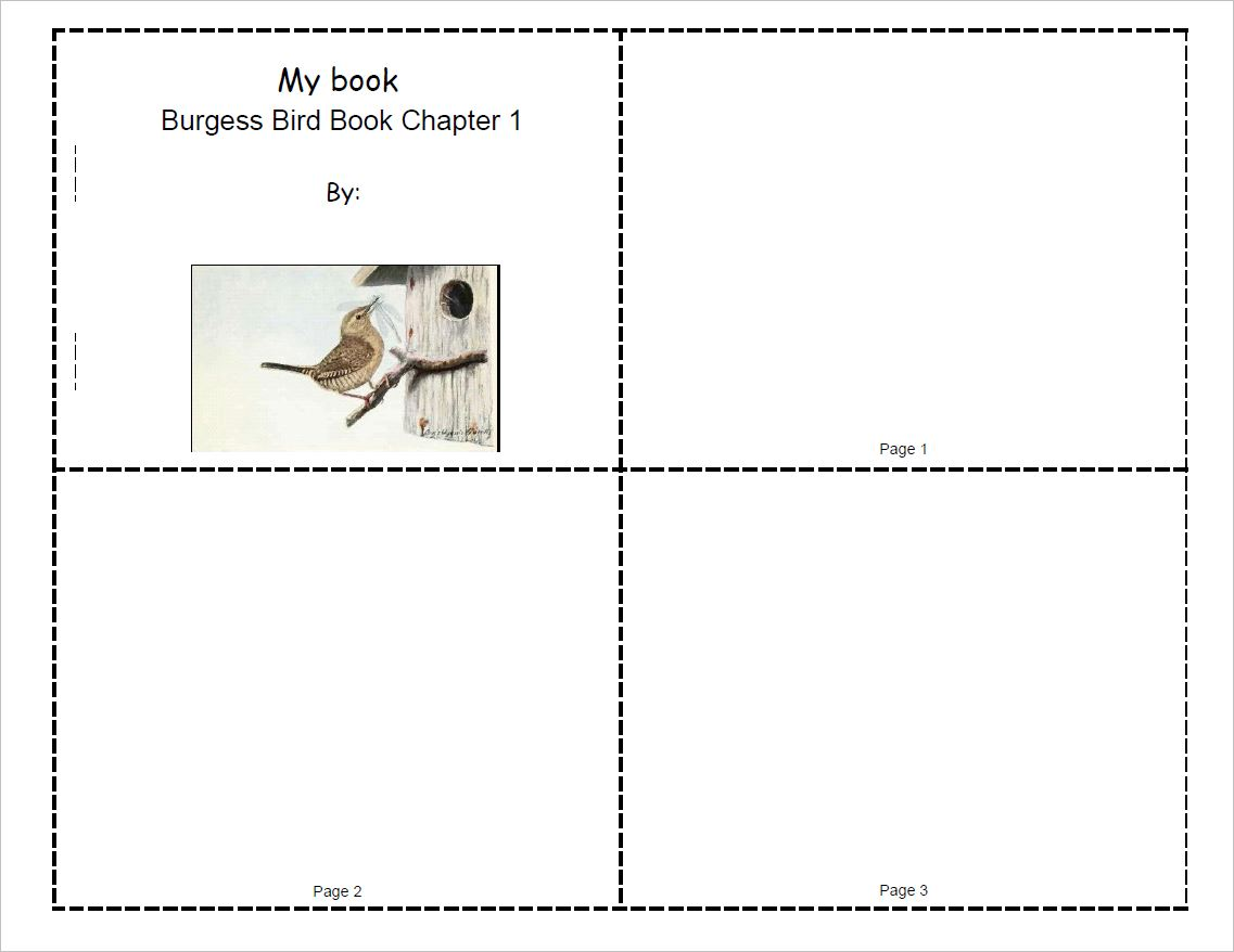 Burgess Bird Book Mini-Book Set for Ch.1-10