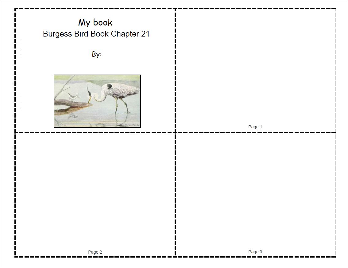 Burgess Bird Book Mini-Book Set for Ch.21-30
