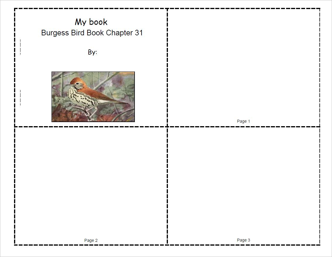 Burgess Bird Book Mini-Book Set for Ch.31-40