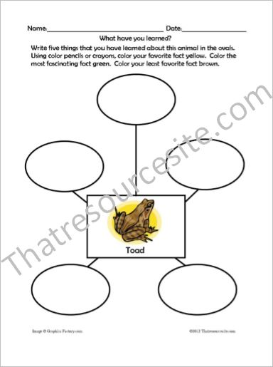 Animal Traits Worksheets Featuring Amphibians
