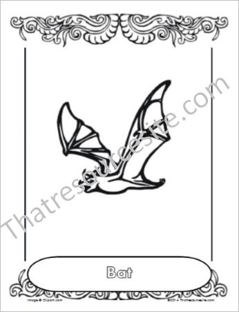Bat Animal Coloring Sheet