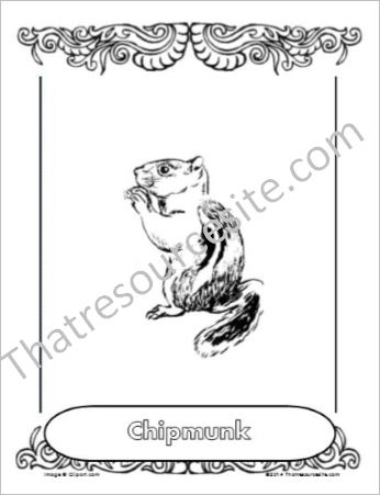 Chipmunk Animal Coloring Sheet
